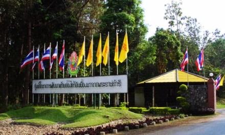 ททท.เสริมสร้างจิตสำนึกให้เยาวชนกับการท่องเทียวที่เป็นมิตรกับสิ่งแวดล้อม Chiang Mai Go Green