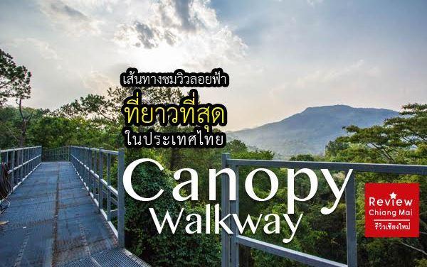 Canopy Walkway เส้นทางชมวิวลอยฟ้าที่ยาวที่สุดในประเทศไทย