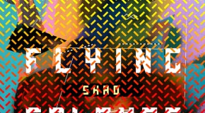 Shad – Flying Colours