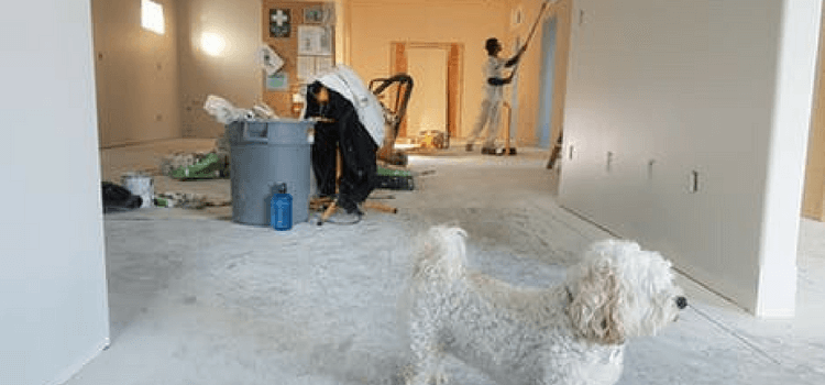 How to Clean A Messy House Step by Step Guide 2018