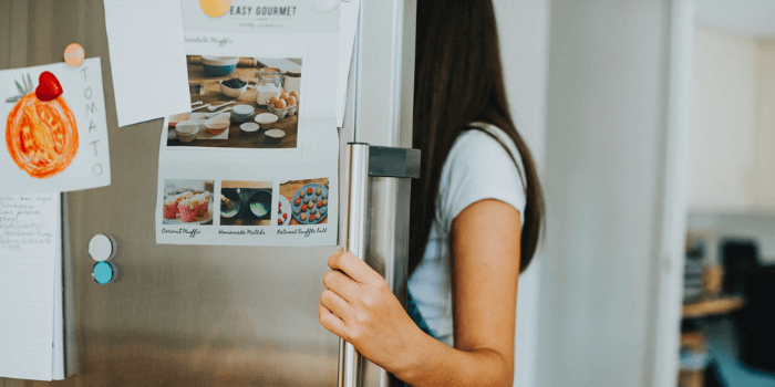 Best Mini Fridge With Separate Freezer