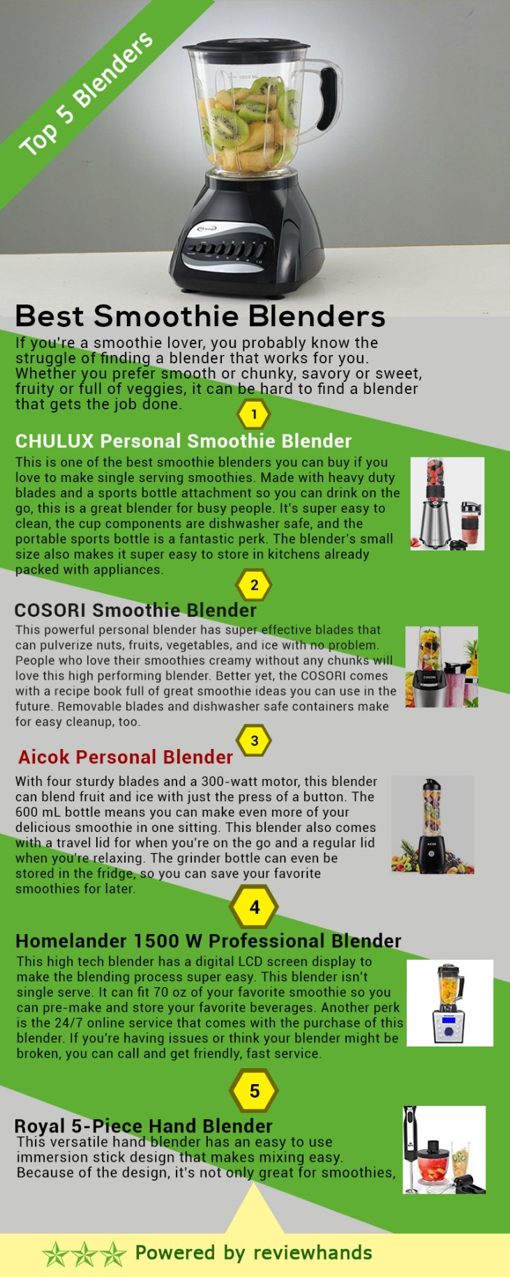 Best Smoothie Blenders Infographic