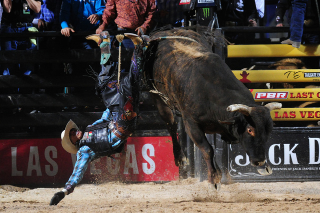 mexican bull rider jorge