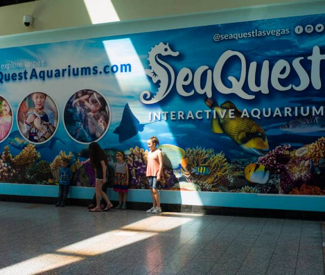 Outside Of The Seaquest Interactive Aquarium At The Boulevard Mall In Las Vegas On Friday
