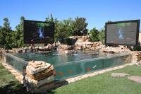 Tanked stars create over-the-top ponds for Las Vegas ...