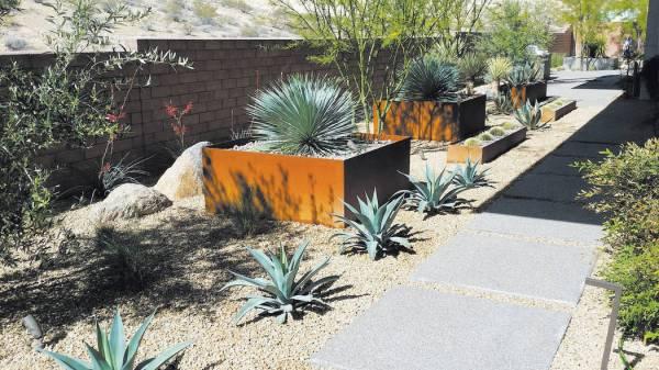 drought-tolerant yards