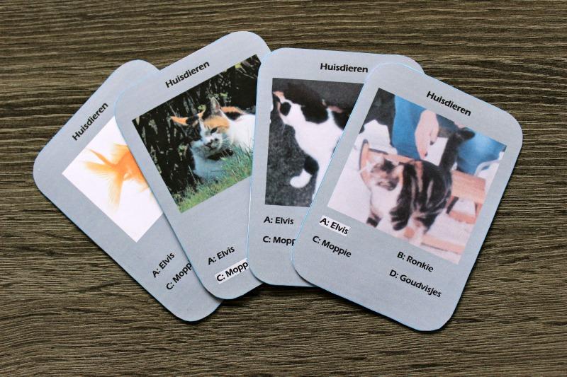 Kwartet huisdieren