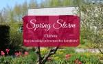 Spring Storm Cursus Hoe ontwikkel je levensechte karakters