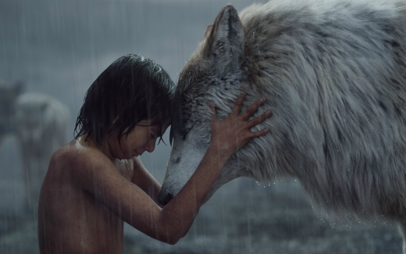 The Jungle Book still