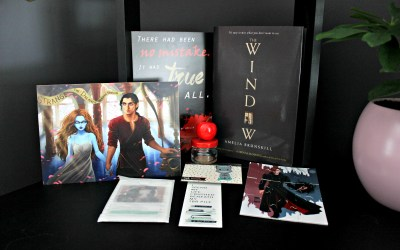 Unboxing | Celebrate Books – Lie to me