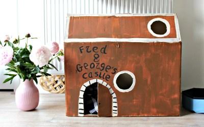 Fred & George | Onze voorbereiding op twee kittens
