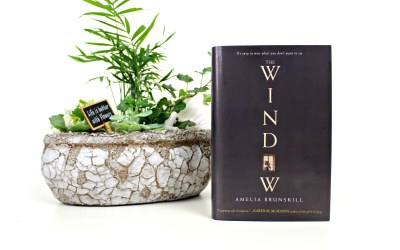 Boekrecensie | The Window – Amelia Brunskill
