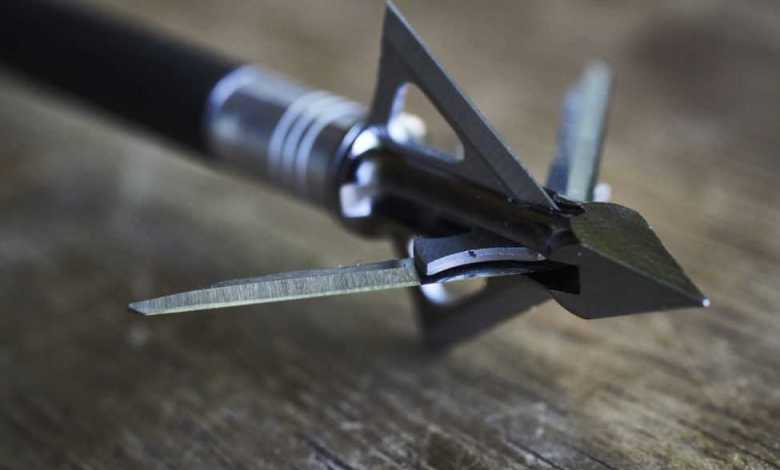 Photo of Top 6 Best Crossbow Broadheads 2019 Reviews and {Buyer Guide}