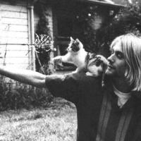 Kurt Cobain With A Cat II