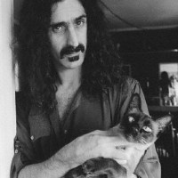 Frank Zappa With A Cat