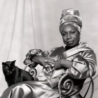 Nina Simone With A Cat