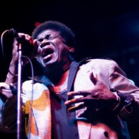 "Charles Bradley: ""Heartaches & Pain"""