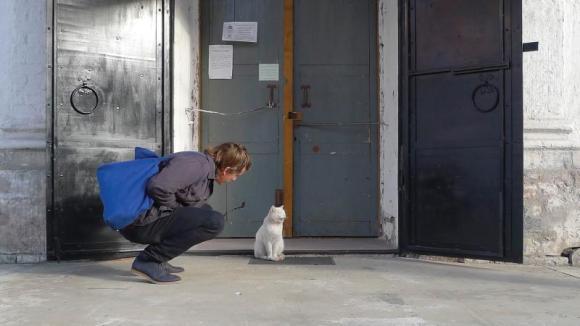 steve-gunn-cat_h
