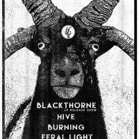 Atlas Kept His Gripes To Himself and Did His Job: Heavy Minnesota Music - Show Announcement: Blackthorne (Record Release), Hive, Burning, and Feral Light|Saturday, Jan. 11th @Moon Palace Books