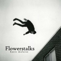 "Song Premiere: Flowerstalks ""Doomscroller"" (Album out today!)"