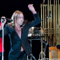 Photos: Iggy Pop at the Northrop Auditorium