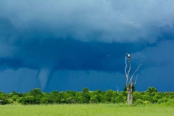"""Mini """"Tornado"""" over Lake Victoria. Image by National Geographic."""