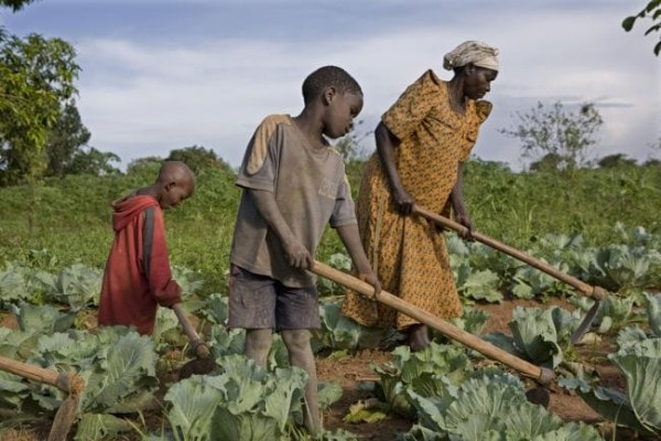 Subsistence farming is an example of direct production. Image credit weebly.com