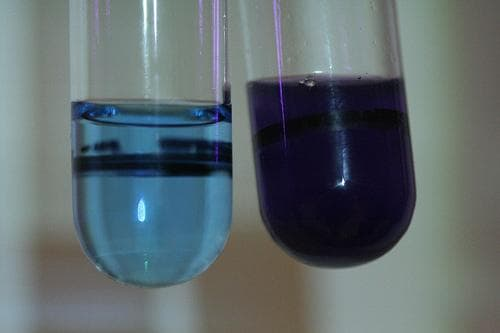 Negative (left) and Posative (right) test results for protein. Image credit wordpress.com