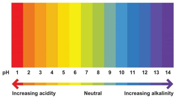 colours on the ph chart: The ph scale free zimsec revision notes and past exam papers