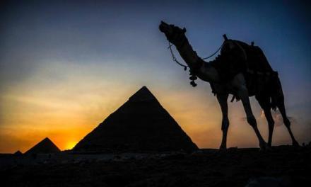 El guiso con el que lograban proteínas hace 4.500 años los constructores de las pirámides de Egipto