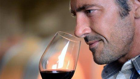 Nove vinhos espetaculares com preços inferiores a 90 reais