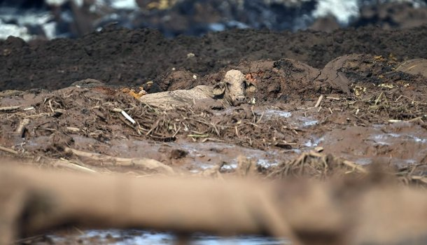 O rompimento da barragem de Brumadinho não é acidente: é crime praticado pelas mineradoras e políticos