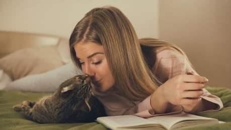 Ser gateiro é mais do que gostar de gatos, é ser um feliz escravo deles