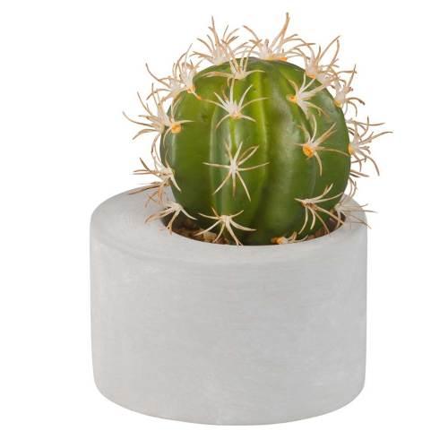 Decoración Zen. Cactus cemento Missons du Monde