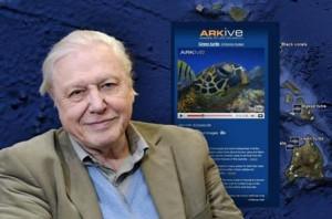 sir-david-attenborough-patrocinador-de-wildscreen