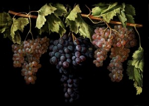 2.Bodegón con cuatro racimos de uvas. Juan Fernández ''el Labrador''. Museo del Prado