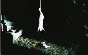 Albert Serra. Història de la meva mort. Película, 2013. Presentación en el Museo Reina Sofía