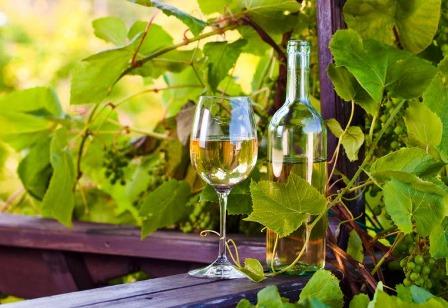 El vino blanco, trece mitos y propiedades - Revista de Arte - Logopress