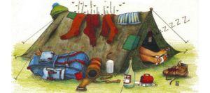 Limpieza y cuidado de las carpas