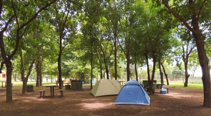 camping81_15