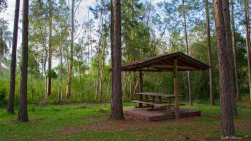 camping2028_16