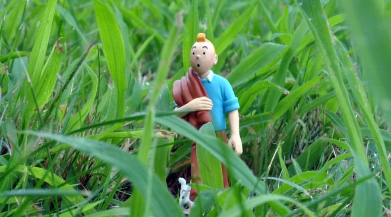 Inefável Tintin