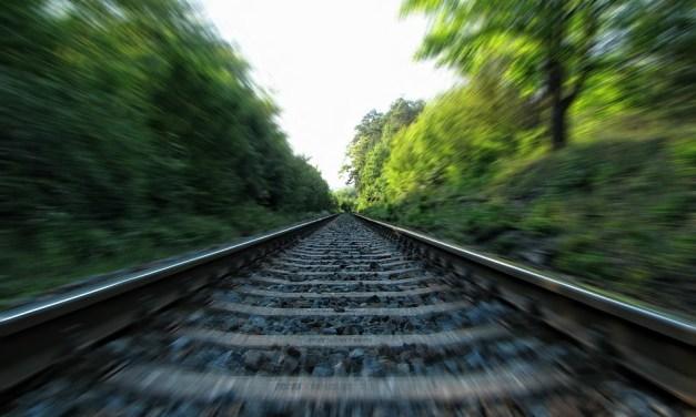 Impactos positivos y negativos de la construcción del Tren Maya