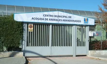 El Ayuntamiento de Móstoles (PSOE+ MÁS MADRID-GANAR MÓSTOLES) contra los trabajadores municipales