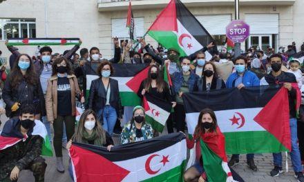 La Red Internacional de apoyo al pueblo Saharaui exige al gobierno de España la celebración del referéndum en el Sáhara