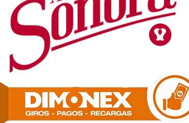 Arroz Sonora -Dimonex