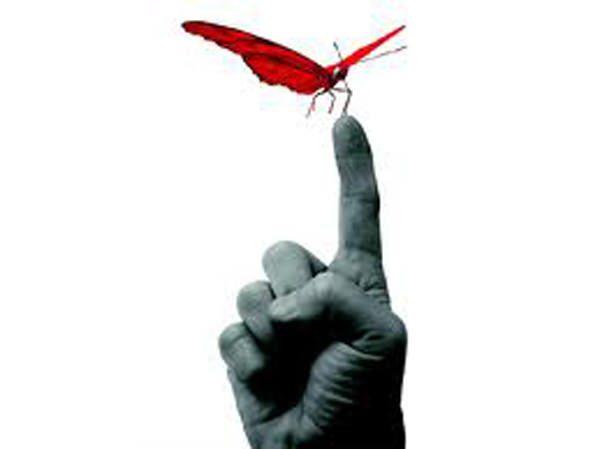 Mariposa-dedo-equilibrio-mental