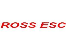 IIº CROSS ESCOLAR COMUNIDAD DE MADRID 2