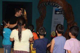 el mupe comienza este domingo las actividades de celebración del día de los museos