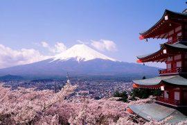 ocho jÓvenes investigadores espaÑoles becados por gobierno de japÓn